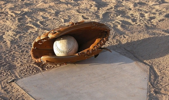 how-many-baseball-gloves-can-be-made-from-one-cow